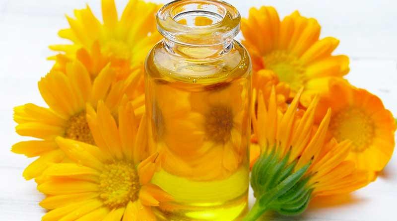 Cozinha aromática: cozinhe com óleos essenciais